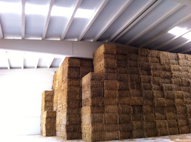 Nave agrícola en San Millán, Álava
